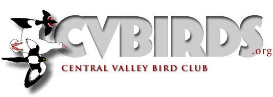 Central Valley bird Club logo