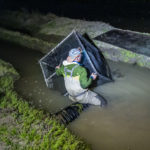 UC Davis researchers work to collect salmon from one of 8 precut fields full of Salmon in Knights Landing CA, Thursday, March 5, 2020.Photo Brian Baer